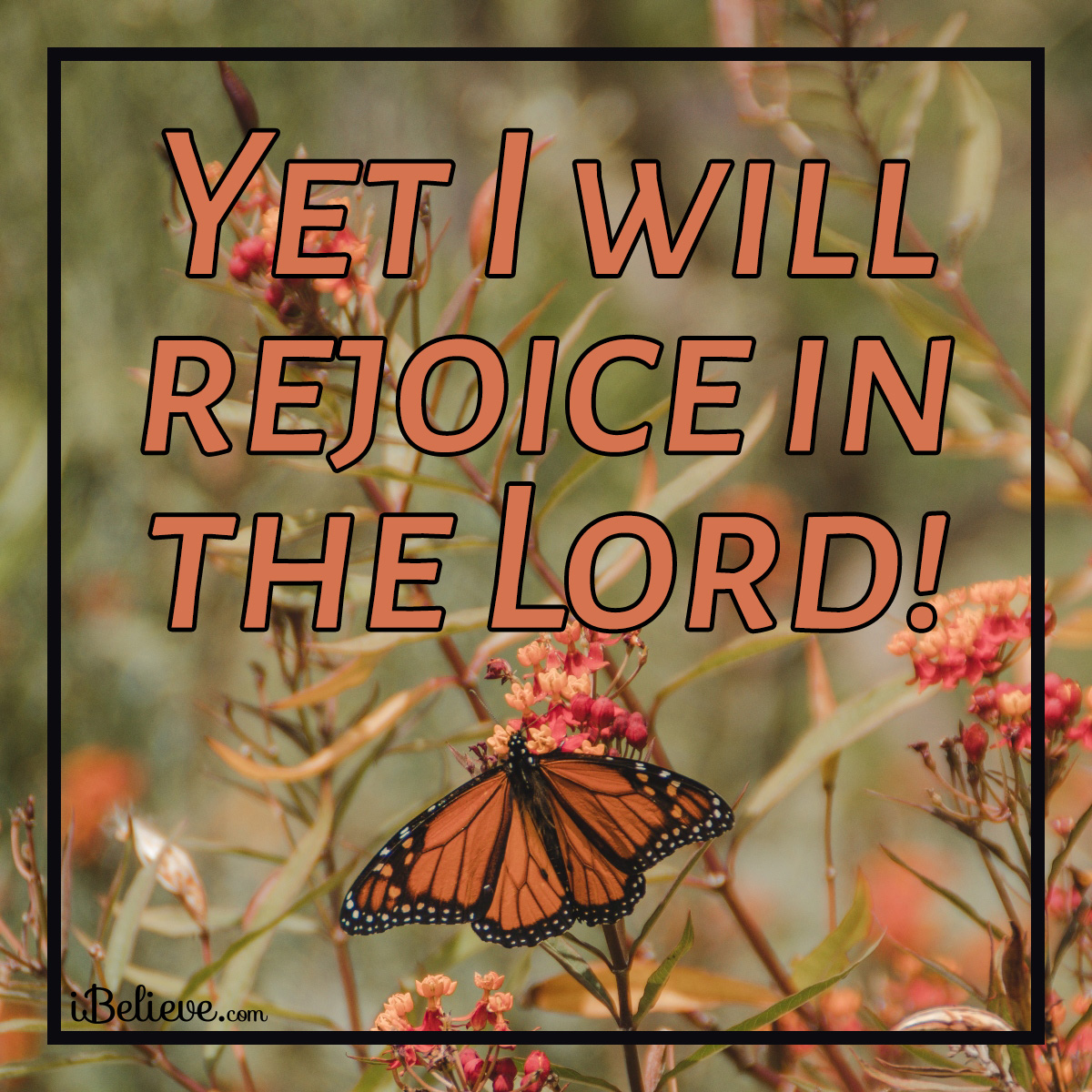 Yet I will rejoice in the Lord, inspirational image