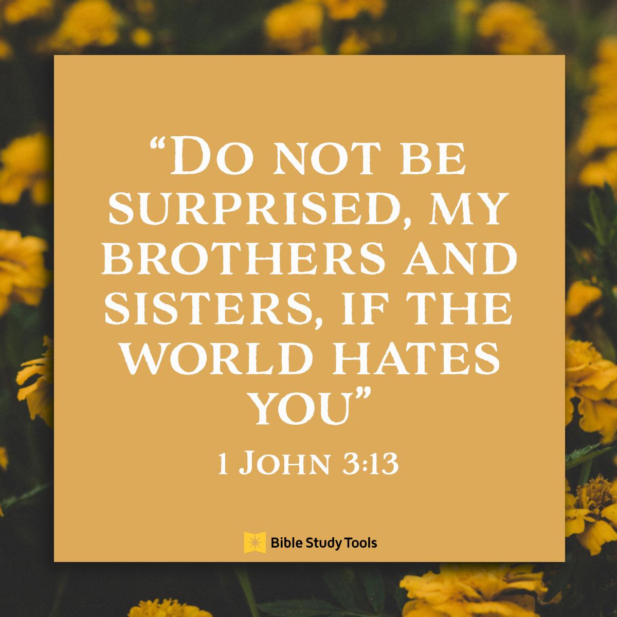 1 John 3:13 sq