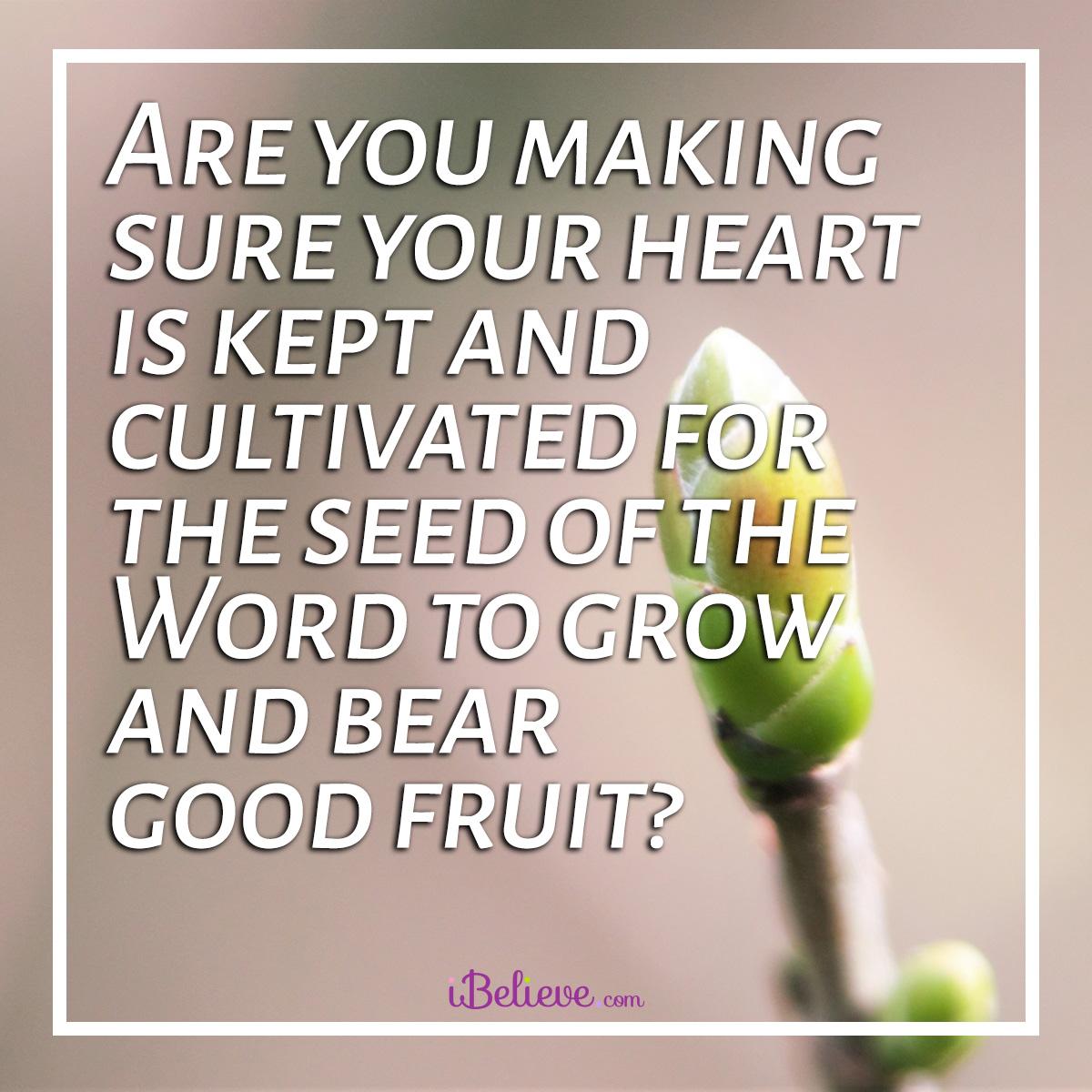 good-fruit