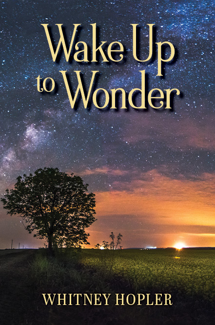 Wake Up to Wonder book cover