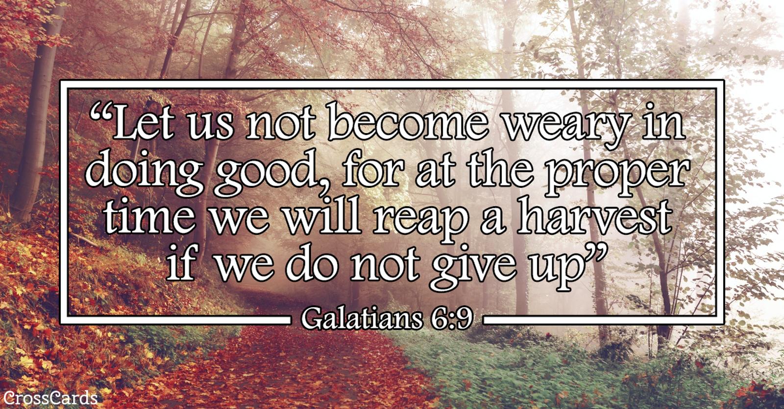 Galatians 6:9 - Do Not Give Up ecard, online card