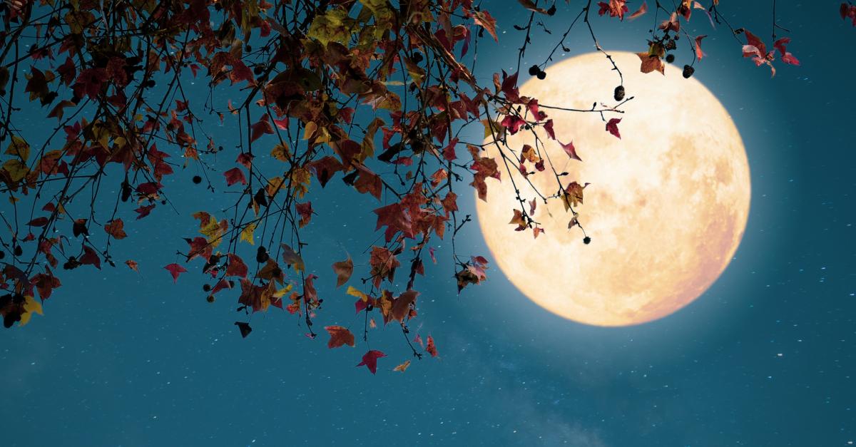 full moon on autumn night halloween reformation all saints day