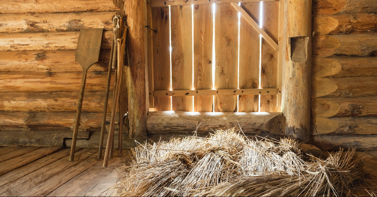 What Was a Threshing Floor in the Bible?