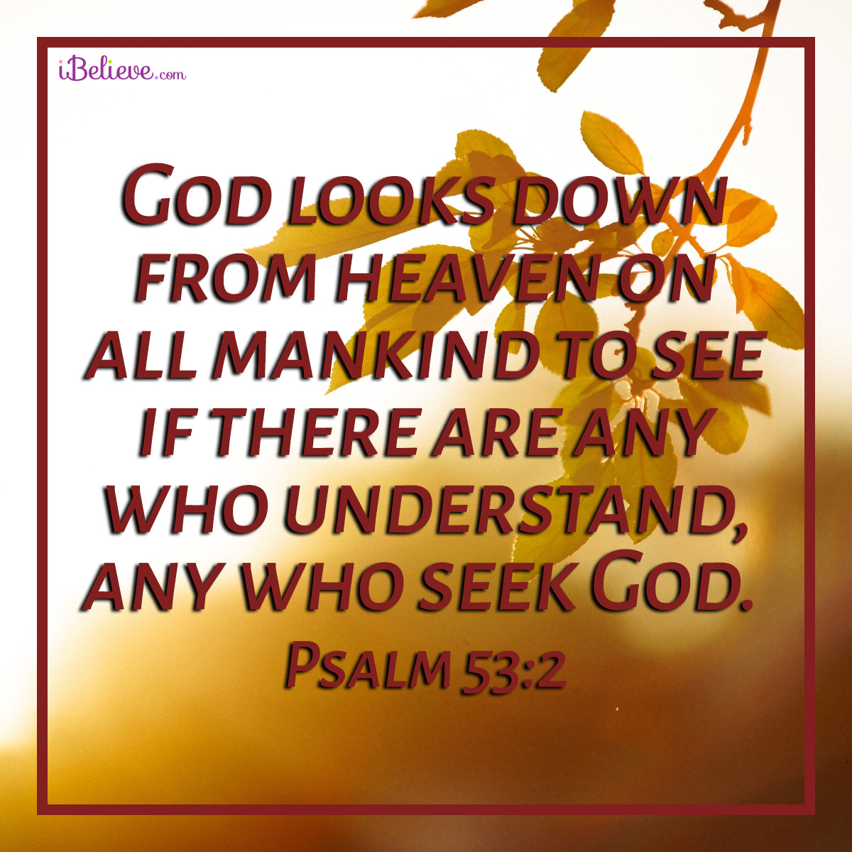 Psalm 53:2, inspirational image