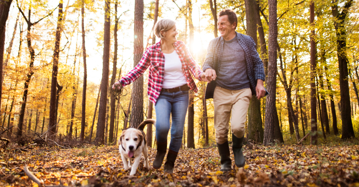 senior mature couple hiking in woods in autumn with dog