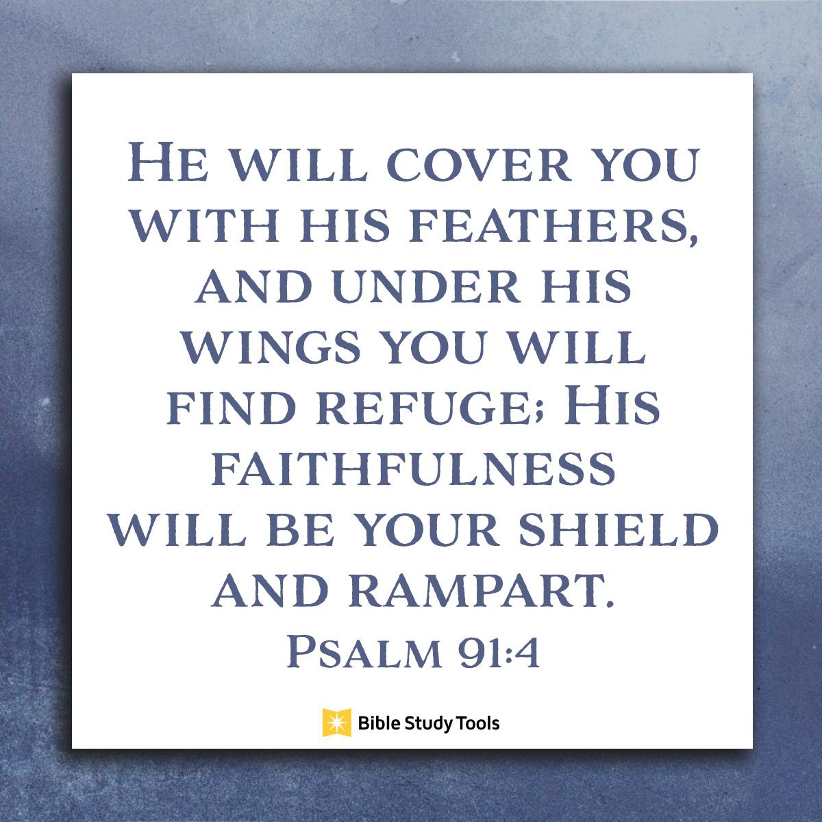 Psalm 91:4, inspirational image