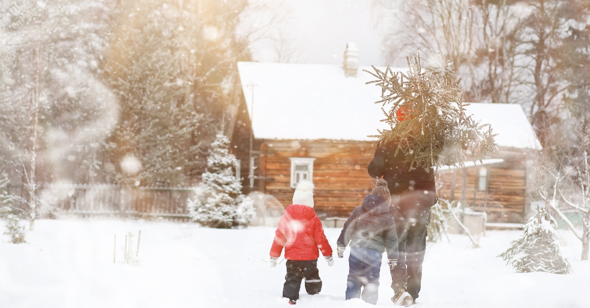 father and children carrying christmas tree to cabin in snow, old fashioned traditions