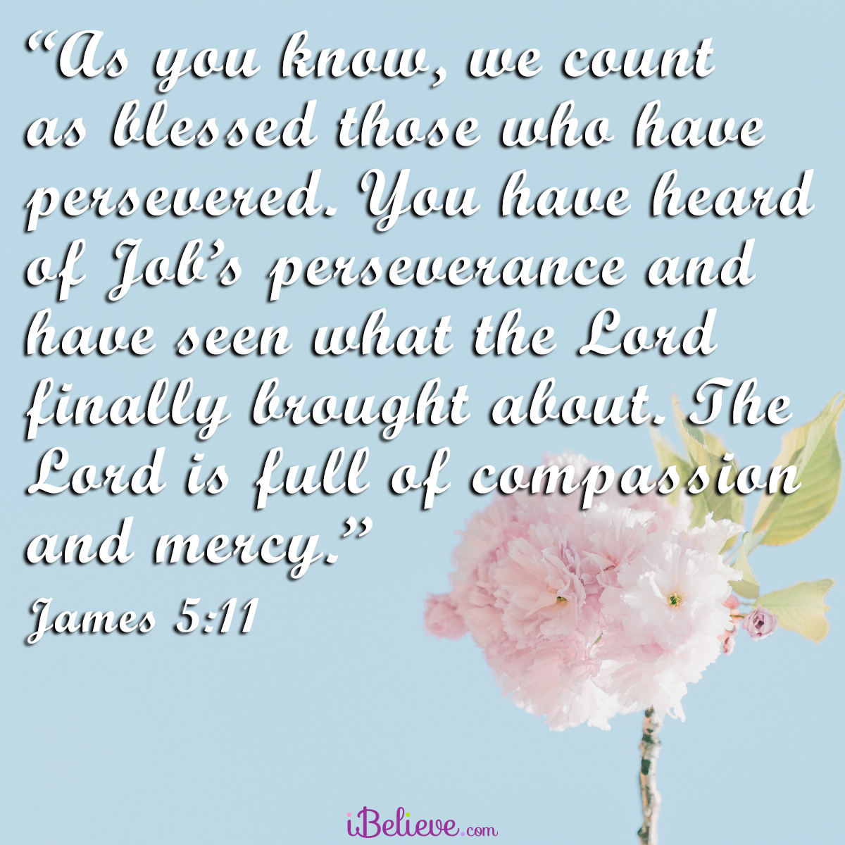 James 5:11, square