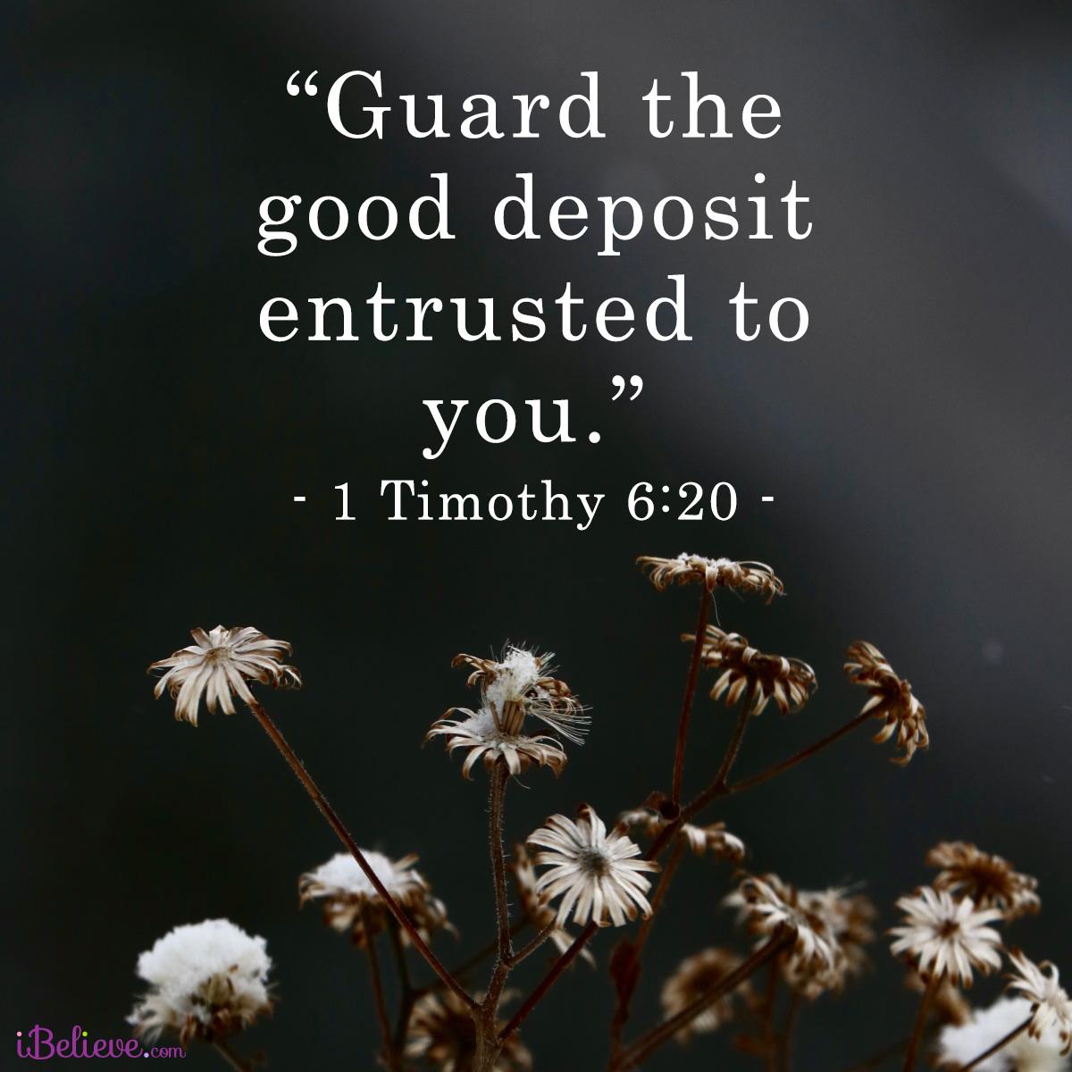 1 Timothy 6:20