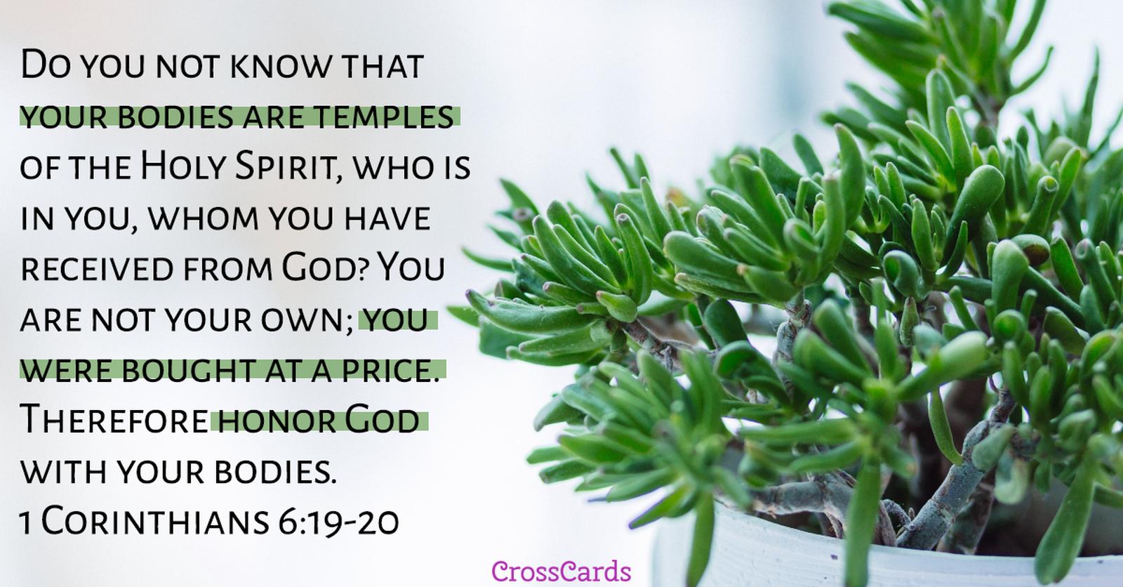 1 Corinthians 6:19-20 ecard, online card