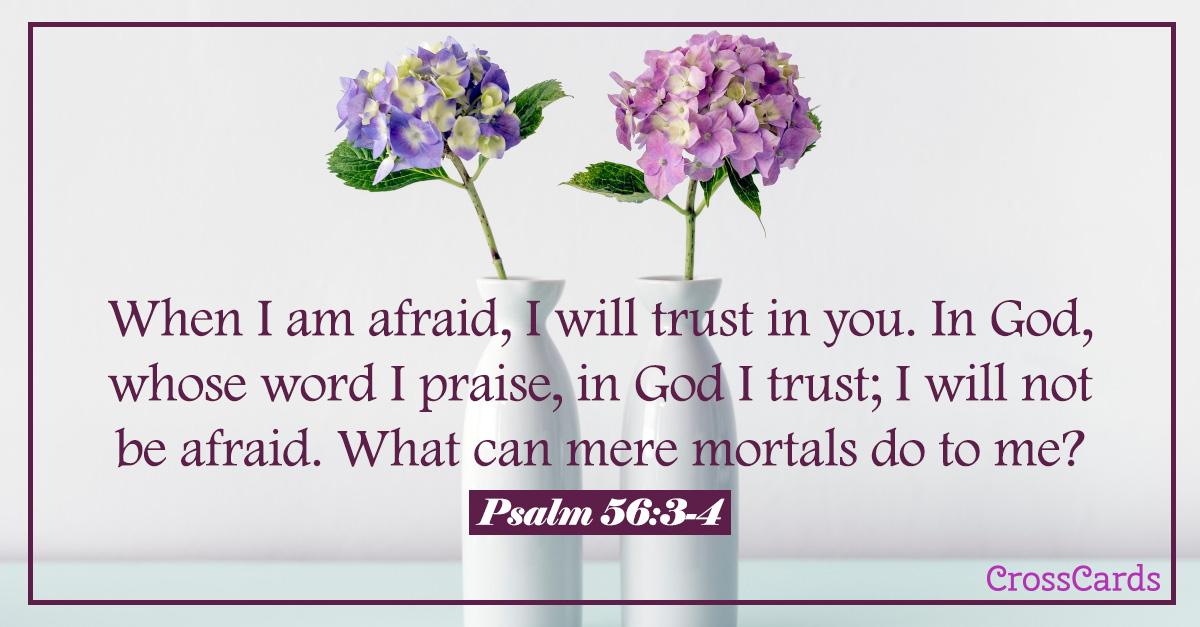 Psalm 56:3-4 ecard, online card