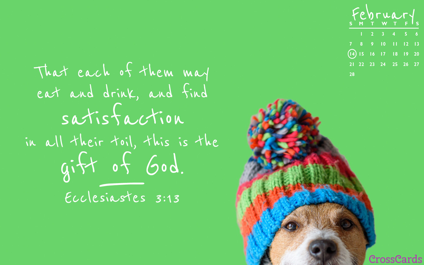 February 2021 - Ecclesiastes 3:13 mobile phone wallpaper