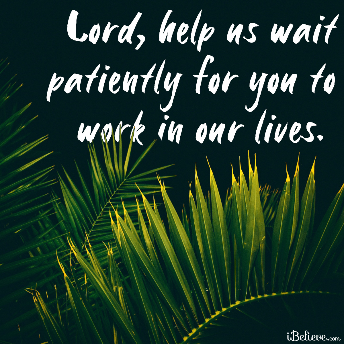 wait patiently inspirational image