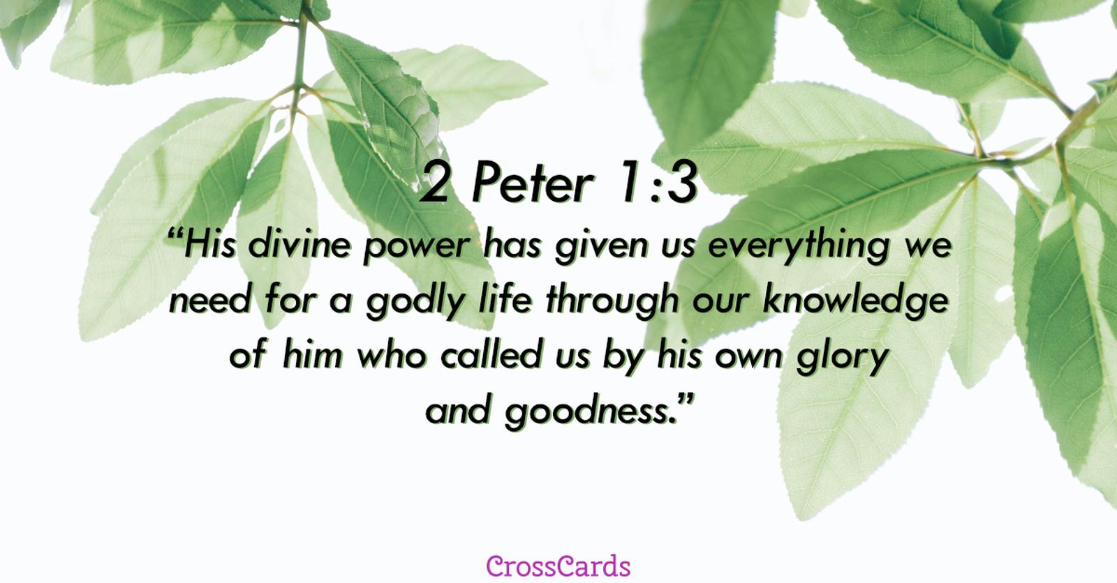 2 Peter 1:3 ecard, online card