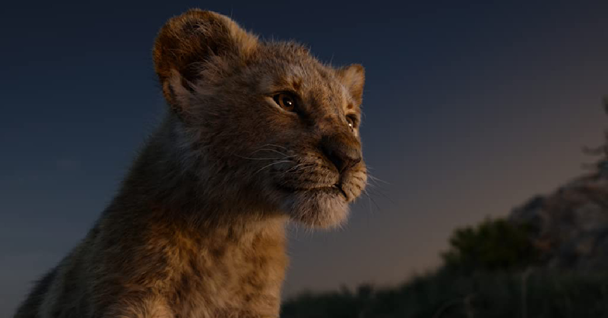 Young Simba in the Live-action Lion King