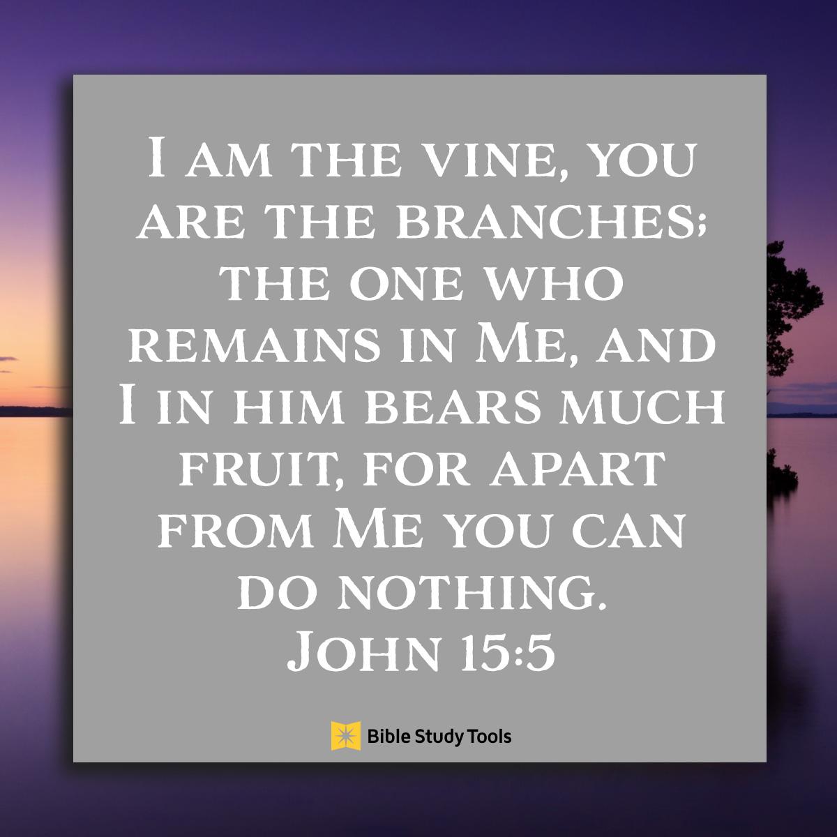 John 15:5, inspirational image