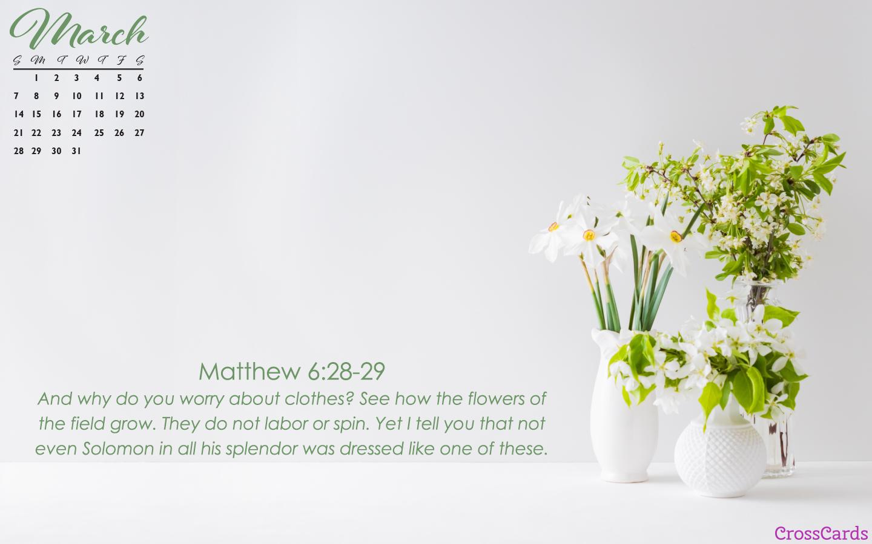 March 2021 - Matthew 6 mobile phone wallpaper