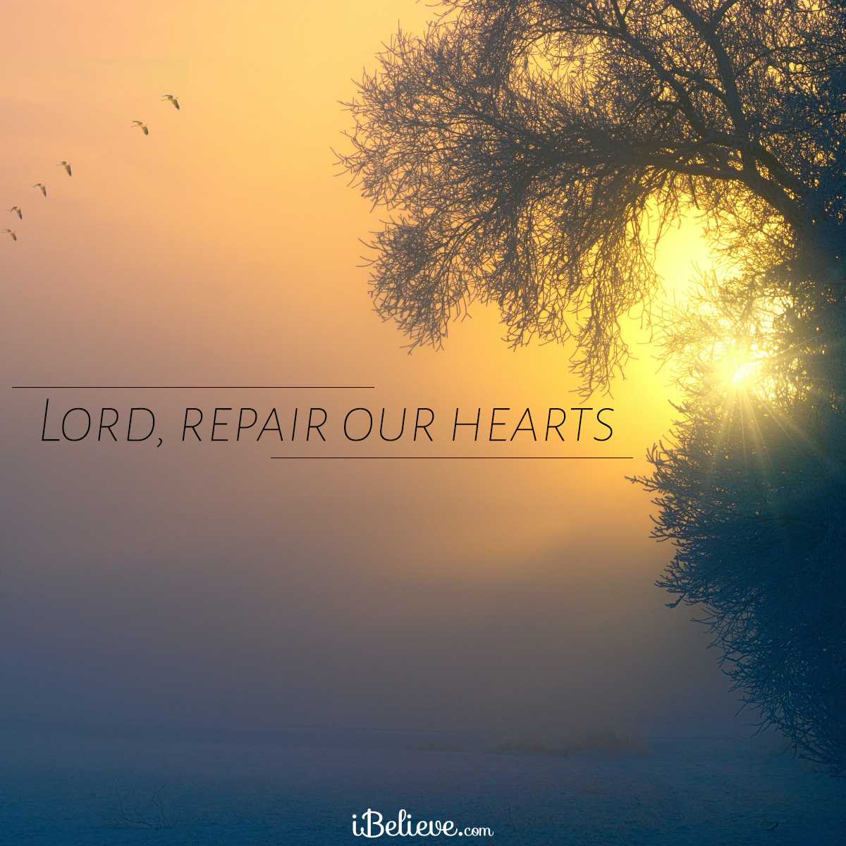 Lord, repair our hearts, inspirational image