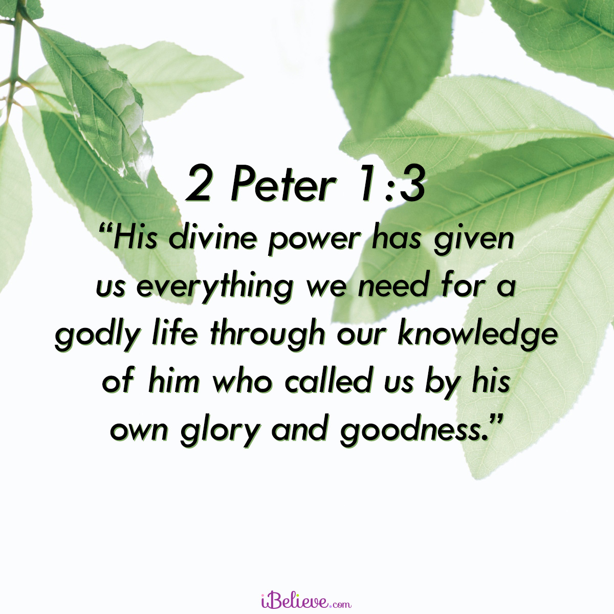 2 Peter 1:3, inspirational image