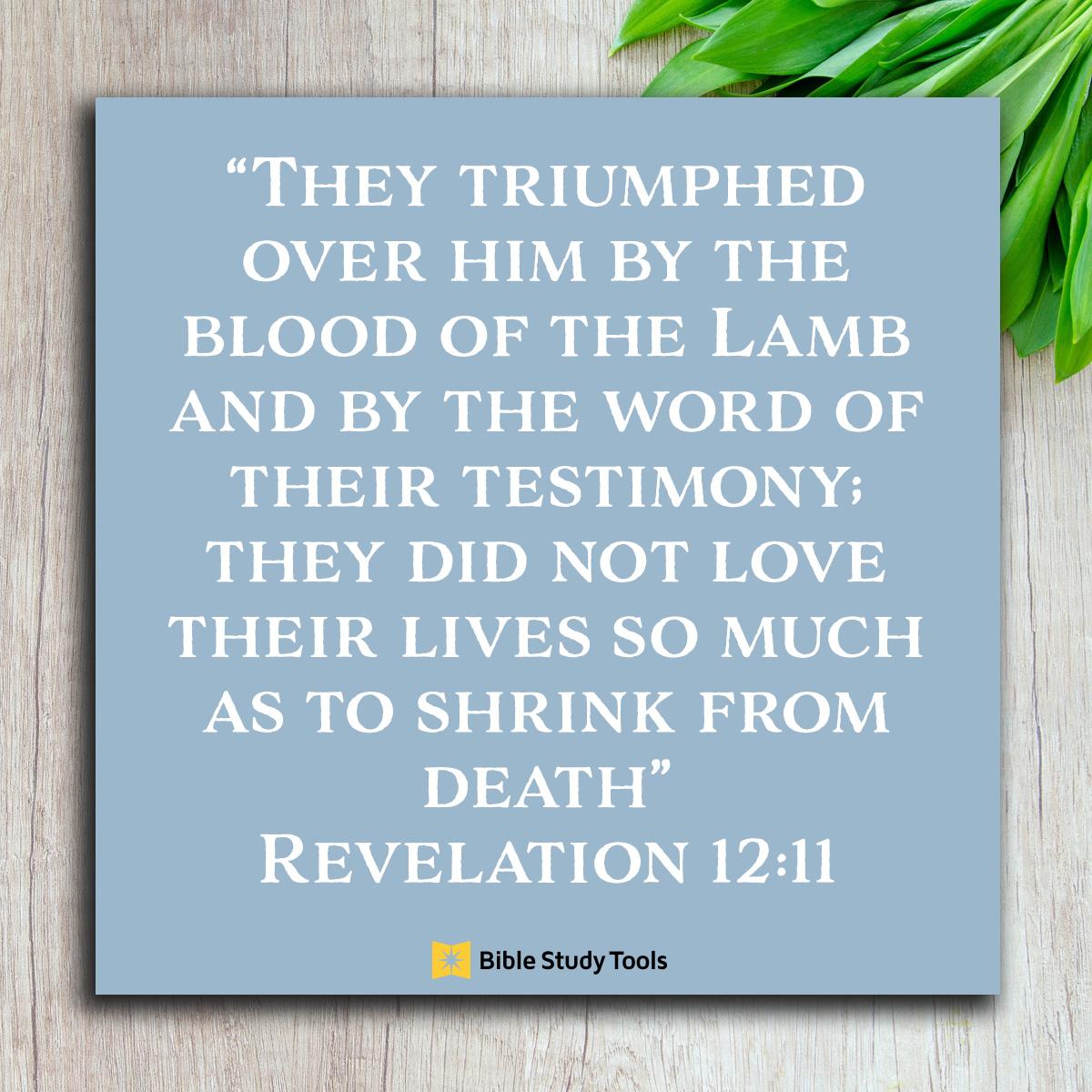 Revelation 12:11, inspirational image