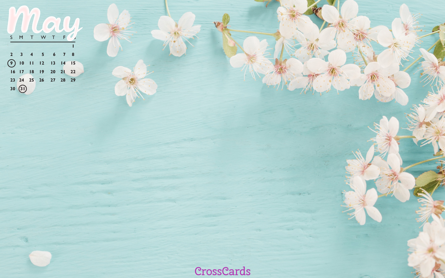May 2021 - Floral mobile phone wallpaper