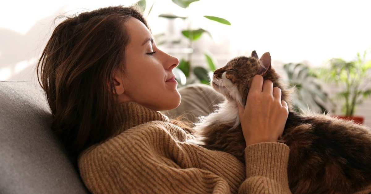 woman with cat laying on chest pet family pet cuddling