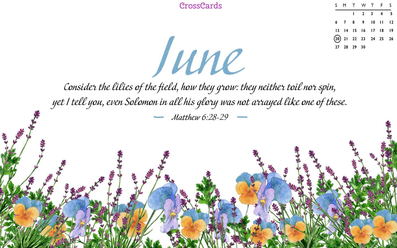 June 2021 - Flowers mobile phone wallpaper