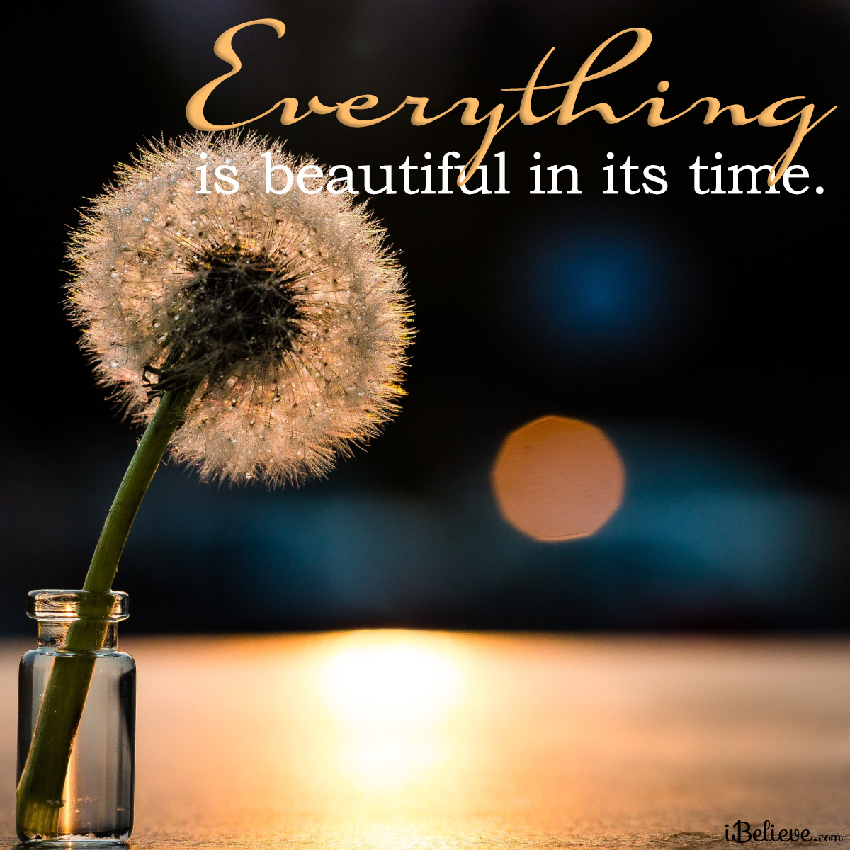 Everything beautiful in its time, inspirational image