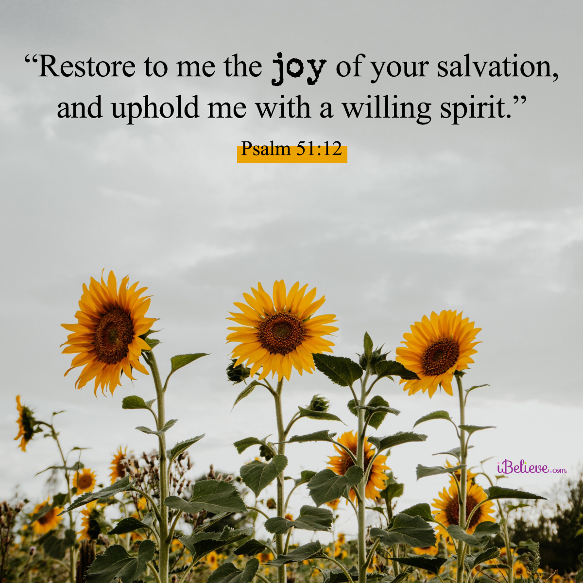 Psalm 51:12, inspirational image