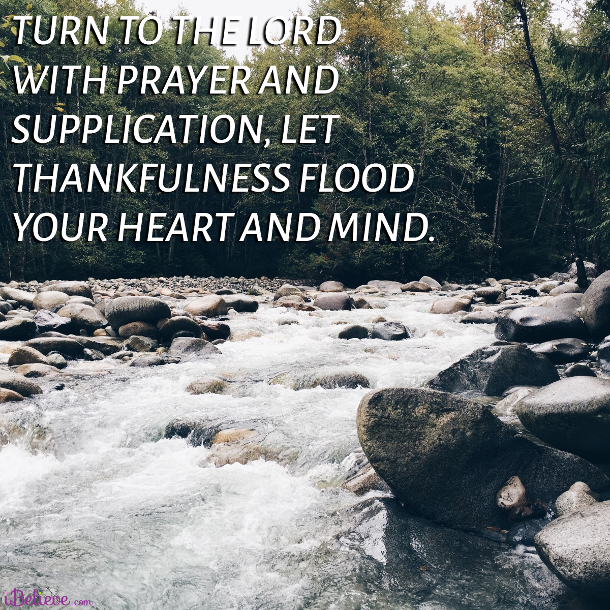 thankful heart and mind
