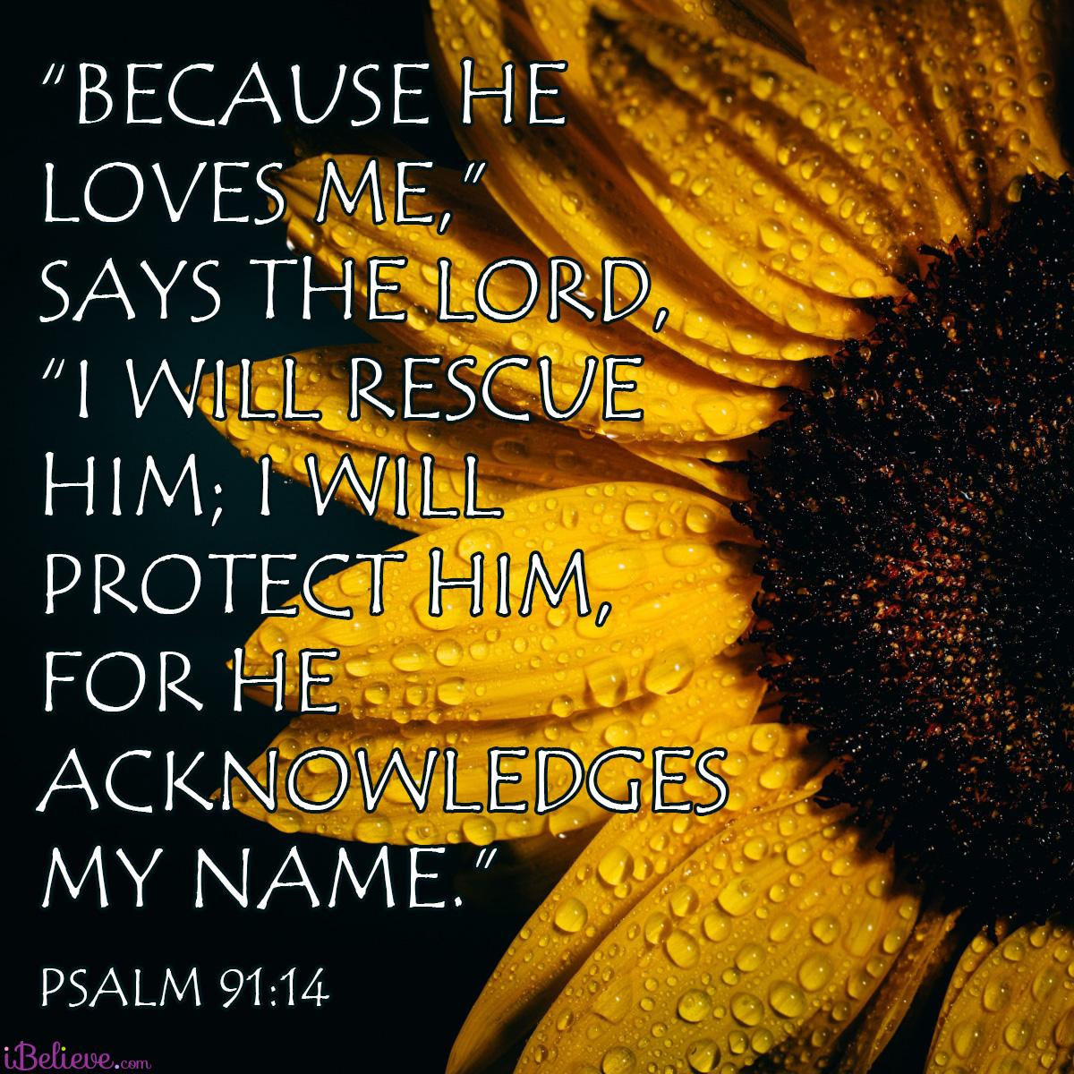 Psalm 91:14, inspirational image