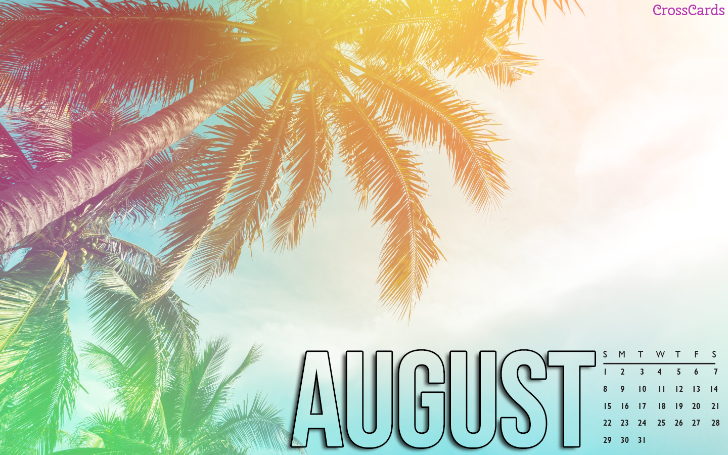 August 2021 - Palm Trees mobile phone wallpaper