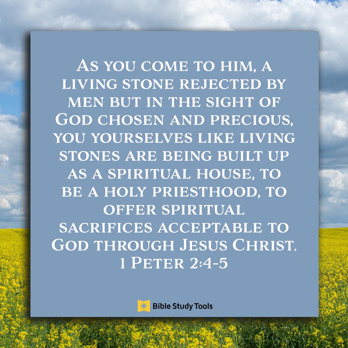 1 Peter 2:4-5, inspirational image