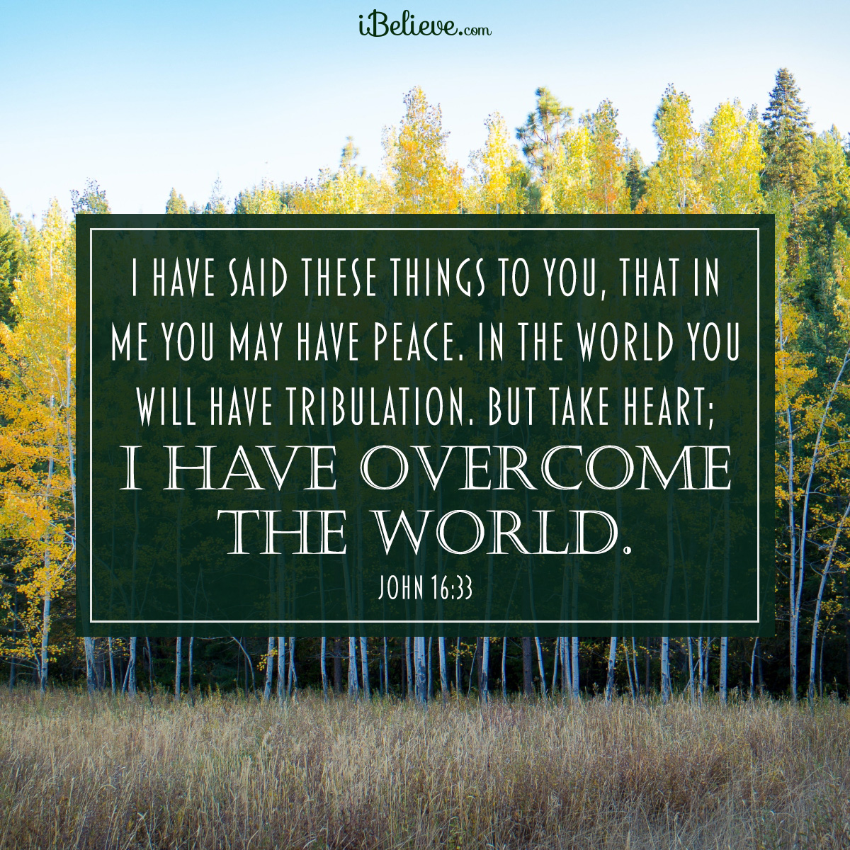 John 16:33, inspirational image