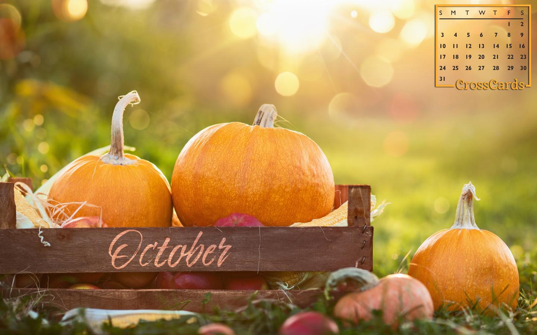 October 2021 - Pumpkins mobile phone wallpaper