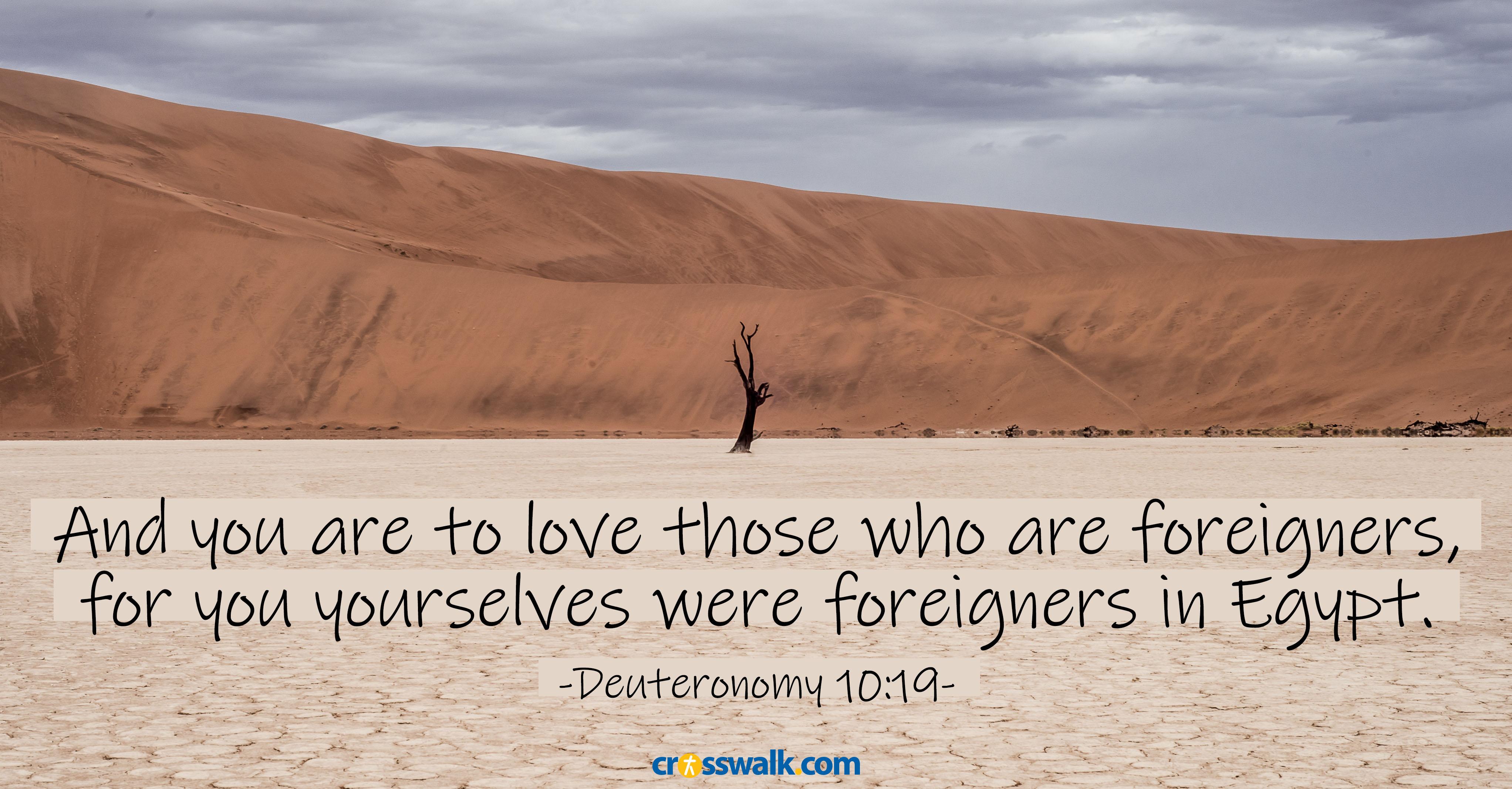 Deuteronomy 10:19 ecard, online card
