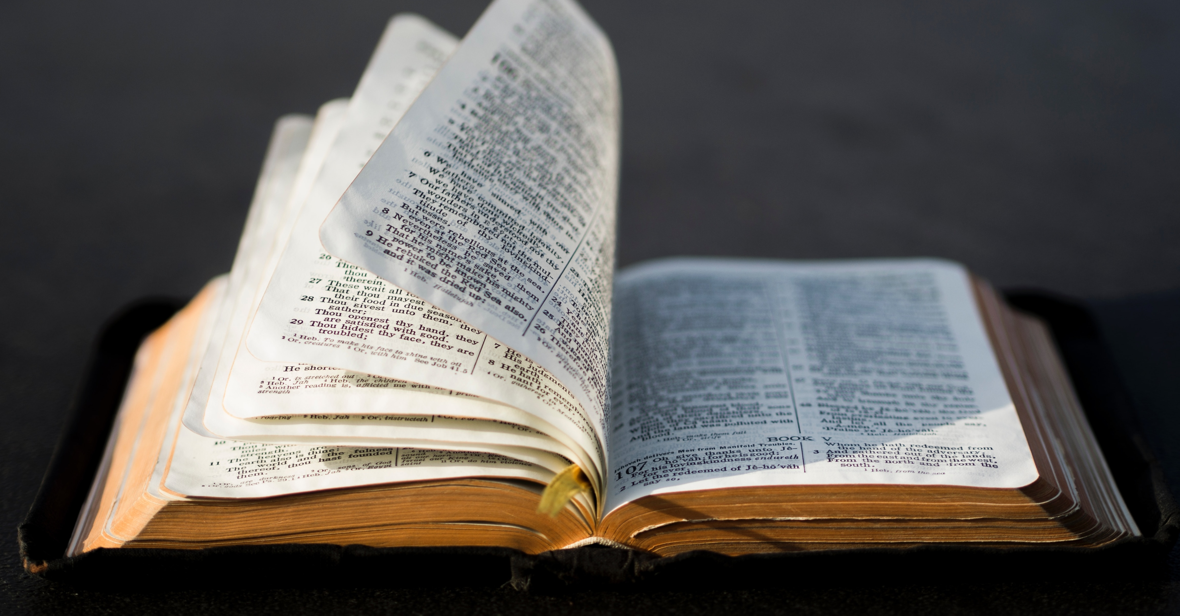 7 Crucial Reasons We Need to Remember God's Word