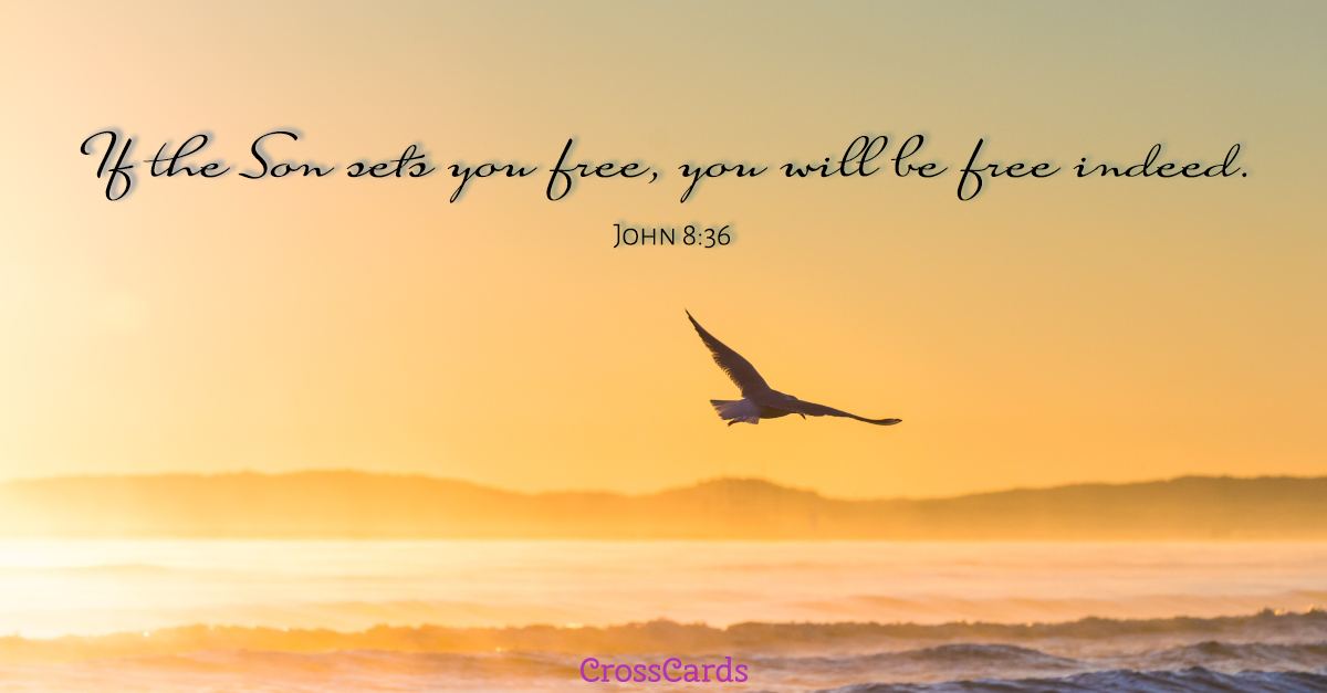 John 8:36 - You Are Free Indeed! ecard, online card