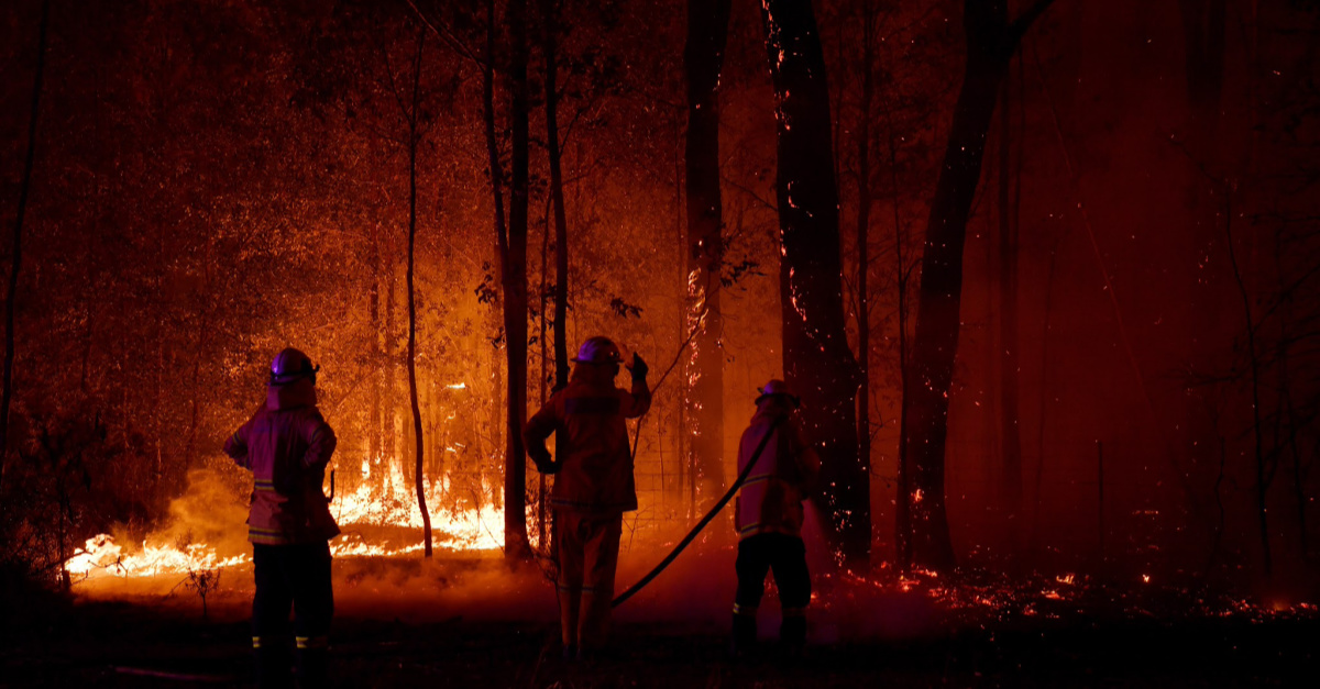 How You Can Help Australia amid Raging Bushfires