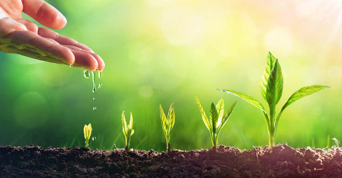 hand sprinkling water on seedlings to suggest micro-habits that grow your faith