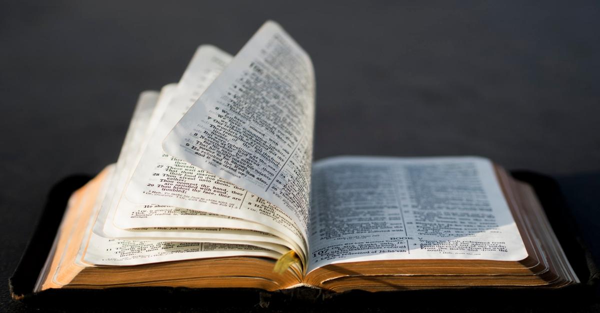 palm sunday bible verses
