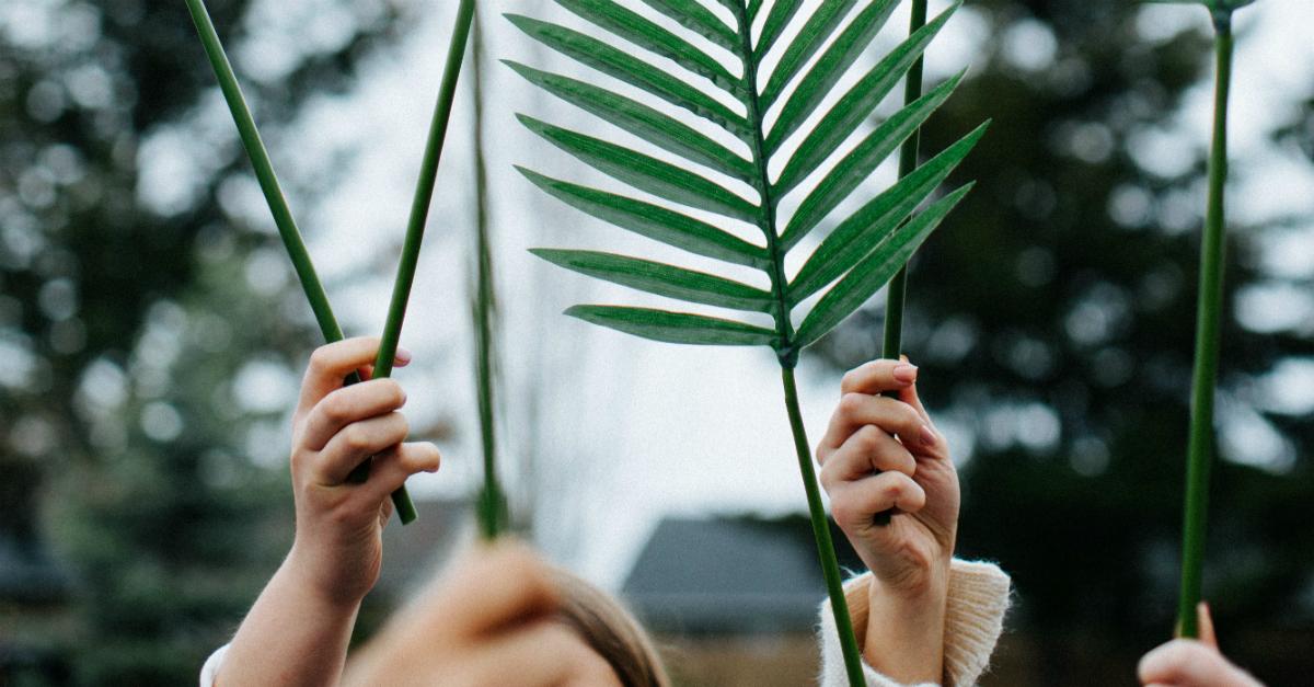 A Triumphant Prayer for Palm Sunday