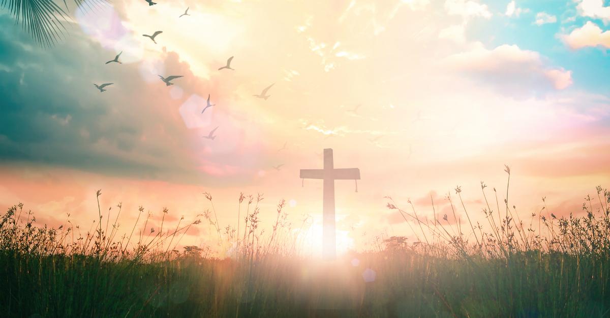 12 New Testament Scriptures about Joy